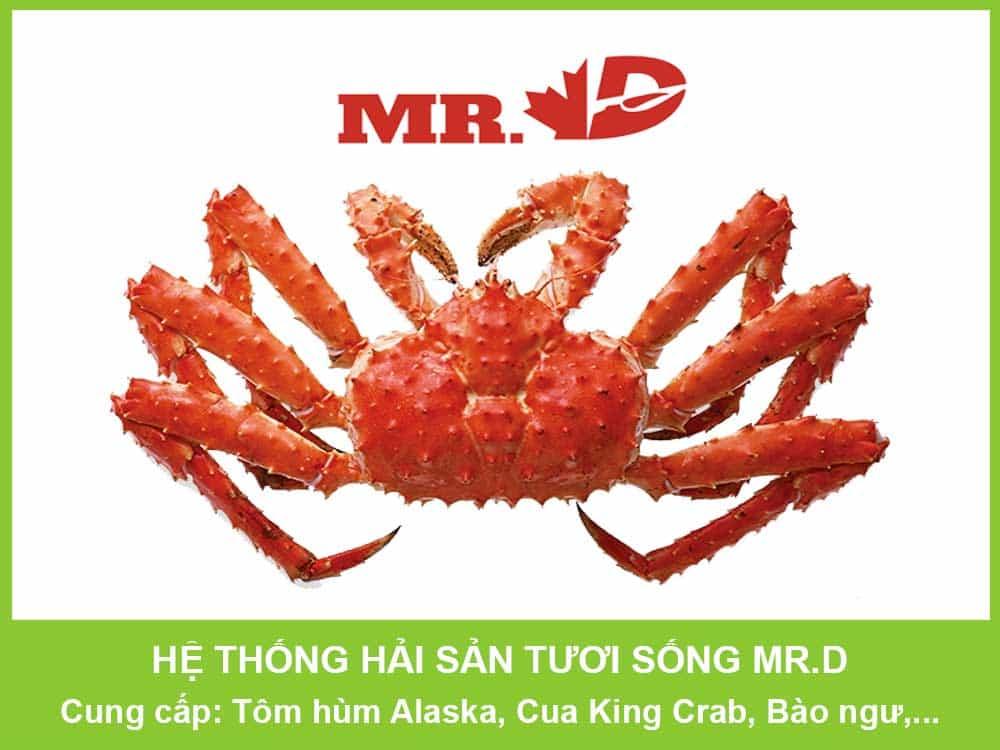 HAI-SAN-MR-D